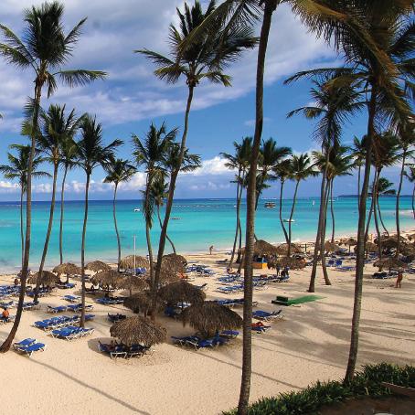 Room Photo 3317867 Barcelo Dominican Beach Hotel Punta Cana